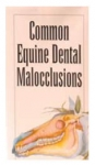 Malocclusion Pamphlet